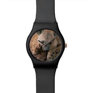 Hyena manchado (Crocuta del Crocuta) con el Relojes De Mano