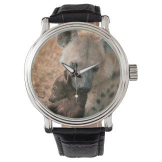 Hyena manchado (Crocuta del Crocuta) con el Relojes De Pulsera
