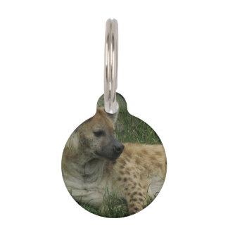Hyena Pet Tags