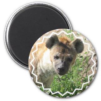 Hyena Photo Magnet