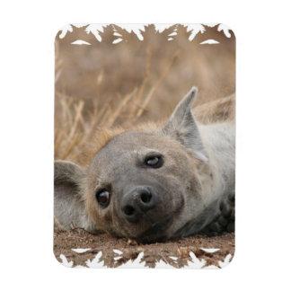 Hyena Picture Premium Magnet