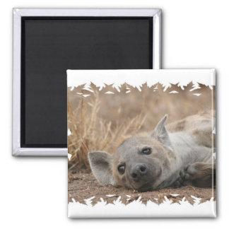Hyena Picture Square Magnet