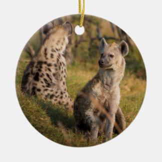 Hyenas Ceramic Ornament