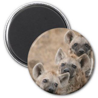 Hyenas Round Magnet