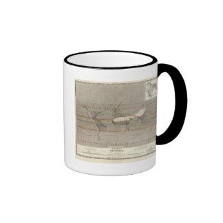 Hyetographic rain map mugs
