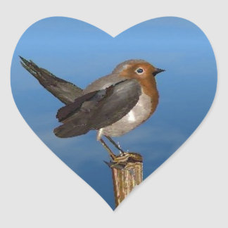 HYPER BIRDS / ROBIN RED BREAST HEART STICKER
