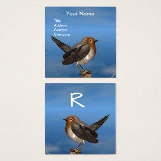 HYPER BIRDS / ROBIN RED BREAST MONOGRAM SQUARE BUSINESS CARD