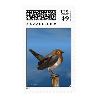 HYPER BIRDS / ROBIN RED BREAST POSTAGE