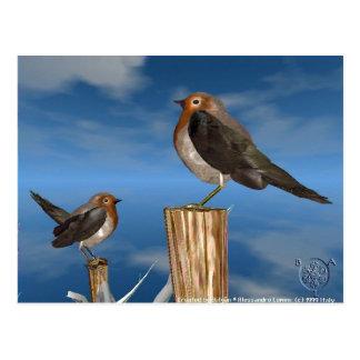 HYPER BIRDS / ROBIN RED BREAST POST CARD