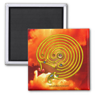 HYPER LABYRINTH 2 INCH SQUARE MAGNET