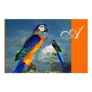 HYPER PARROTS / BLUE ARA  MONOGRAM, orange Customized Stationery