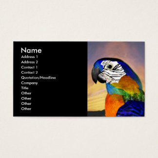 HYPER PARROTS / RED AND BLUE ARA ,black Business Card