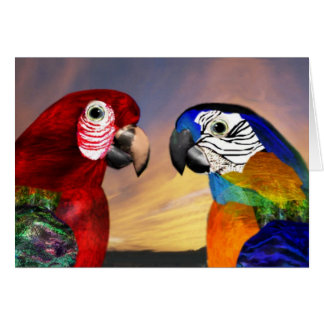 HYPER PARROTS / RED AND BLUE ARA GREETING CARDS