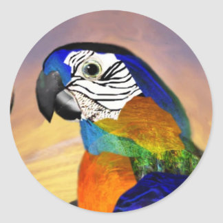 HYPER PARROTS /RED AND BLUE ARA CLASSIC ROUND STICKER