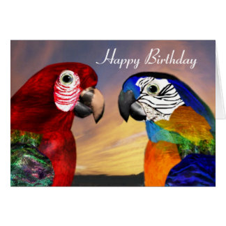 HYPER PARROTS / RED AND BLUE ARA  Happy Birthday Greeting Card