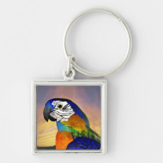 HYPER PARROTS /RED AND BLUE ARA KEYCHAIN
