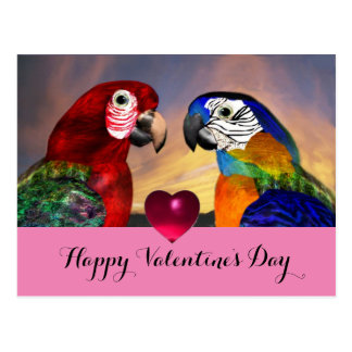HYPER PARROTS,RED BLUE MACAWS Valentine's Day Love Postcard