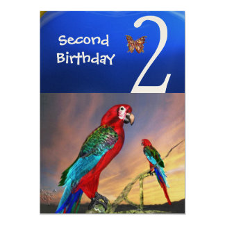 HYPER PARROTS / Second Birthday Party , Champagne 5x7 Paper Invitation Card