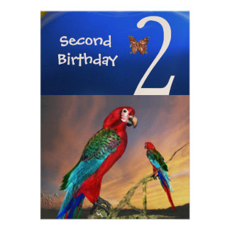 HYPER PARROTS / Second Birthday Party , Champagne Personalized Invitations