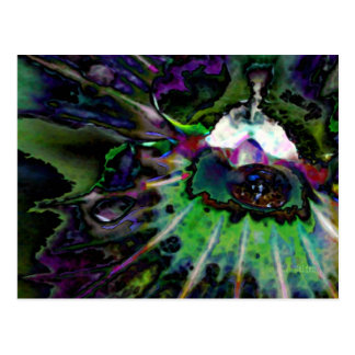 Hypnofluid Postcard