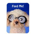 Hypnotic Poodle Flexible Magnets