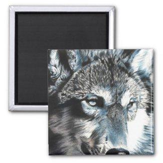 Hypnotic - Wolf Magnet