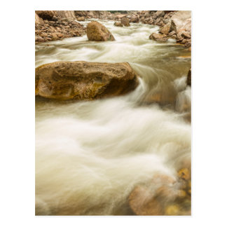 Hypnotized By A Rocky Mountain Stream Postcard