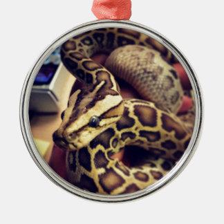 Hypo baby burmese python photo design. metal ornament