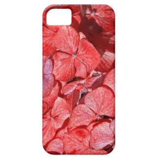 Hyranga -the flower for a 4th anniversary iPhone SE/5/5s case