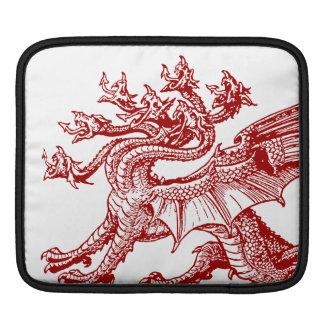 Hyrda medieval - muchos dirigieron el dragón fundas para iPads
