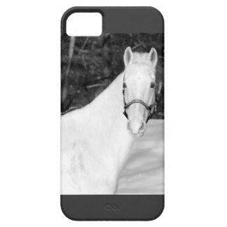 "I6PHONE CASE FOR THE ""HORSE ENTHUSIAST"""