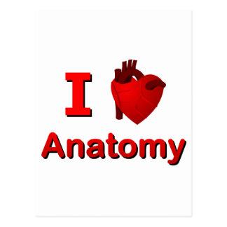 I <3 Anatomy Postcard