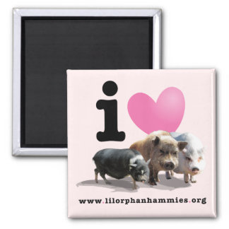 I <3 Pigs Magnet