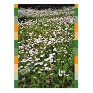 I a en love tarjeta postal