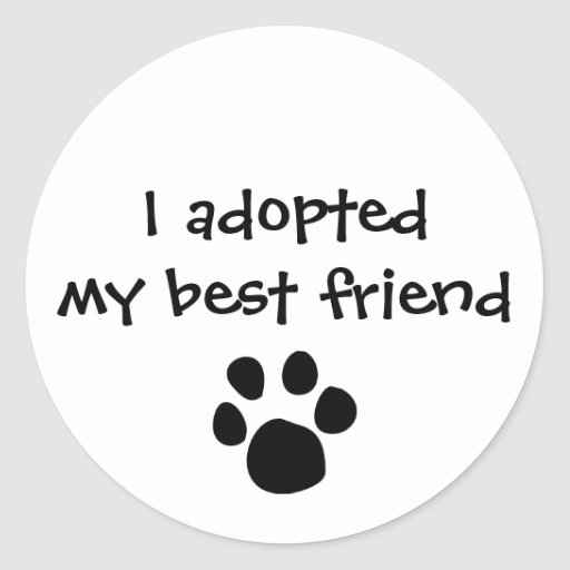 """""""I adopted my best friend""""  Sticker by The Ashes"""