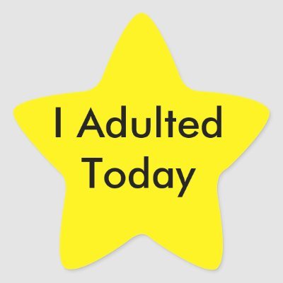Image result for i adulted today