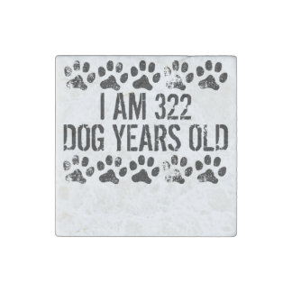I Am 322 Dog Years Old Stone Magnet