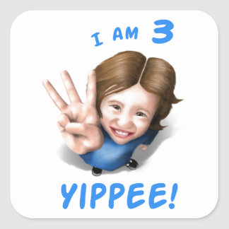 'I Am 3 - Yippee!' - Age 3 Birthday Girl Stickers