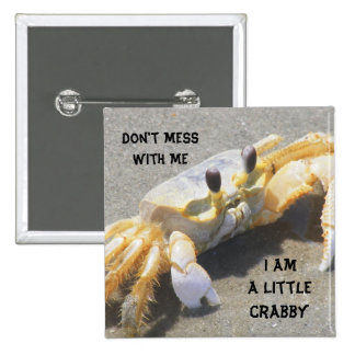 I Am A Little Crabby Pinback Button