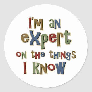I am an expert on things I know Classic Round Sticker