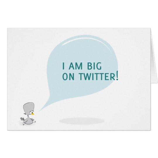 I am big on twitter card