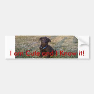I am cute and i know it Puppy Bumper Sticker