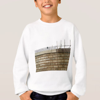 I am doing a great work and so I cannot come down Sweatshirt