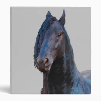 I am horse binders
