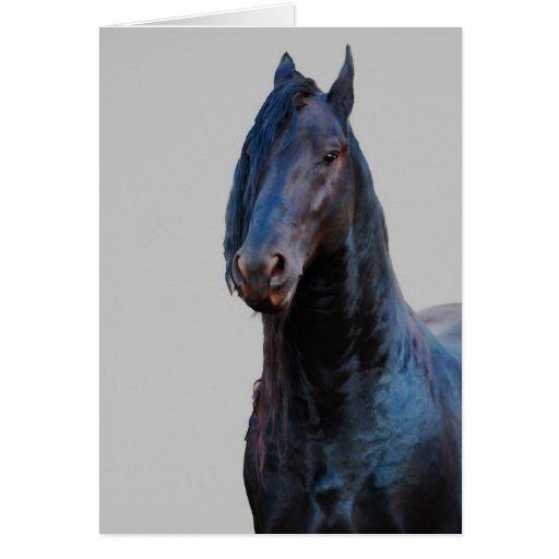 I am horse greeting card