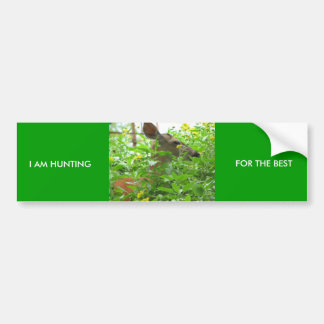I AM HUNTING, FOR THE BEST BUMPER STICKER