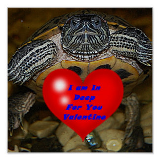 I am In Deep For You Valentine Turtle Print