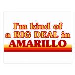 I am kind of a BIG DEAL in Amarillo Postcard