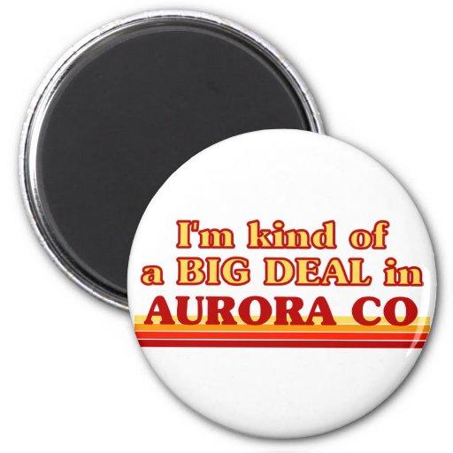 I am kind of a BIG DEAL in Aurora Fridge Magnet