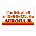 I am kind of a BIG DEAL in Aurora Postcards